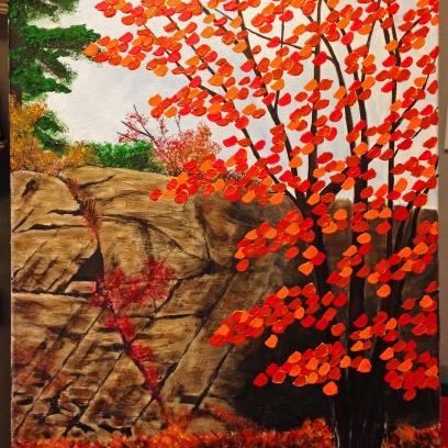 Rock and Tree_JayCooke